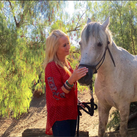 Kim Richards Horse Rescue