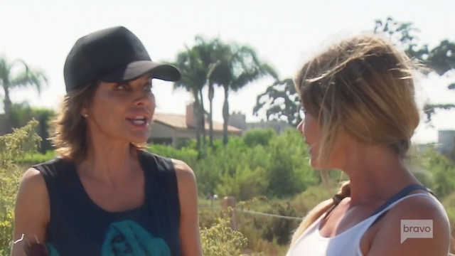 Lisa Rinna & Denise Richards - Real Housewives Of Beverly Hills