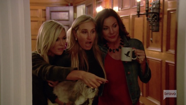 Tinsley Mortimer, Sonja Morgan, and Luann de Lesseps