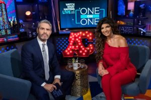 "Teresa Giudice Tells Andy Cohen That ""I Didn't Like You"" At First"